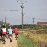 Sortie vélos - camping Les Dunes