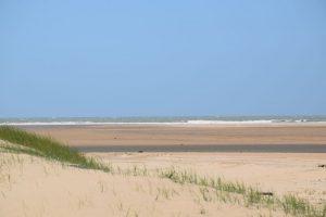 les alentours du camping les dunes Talmont